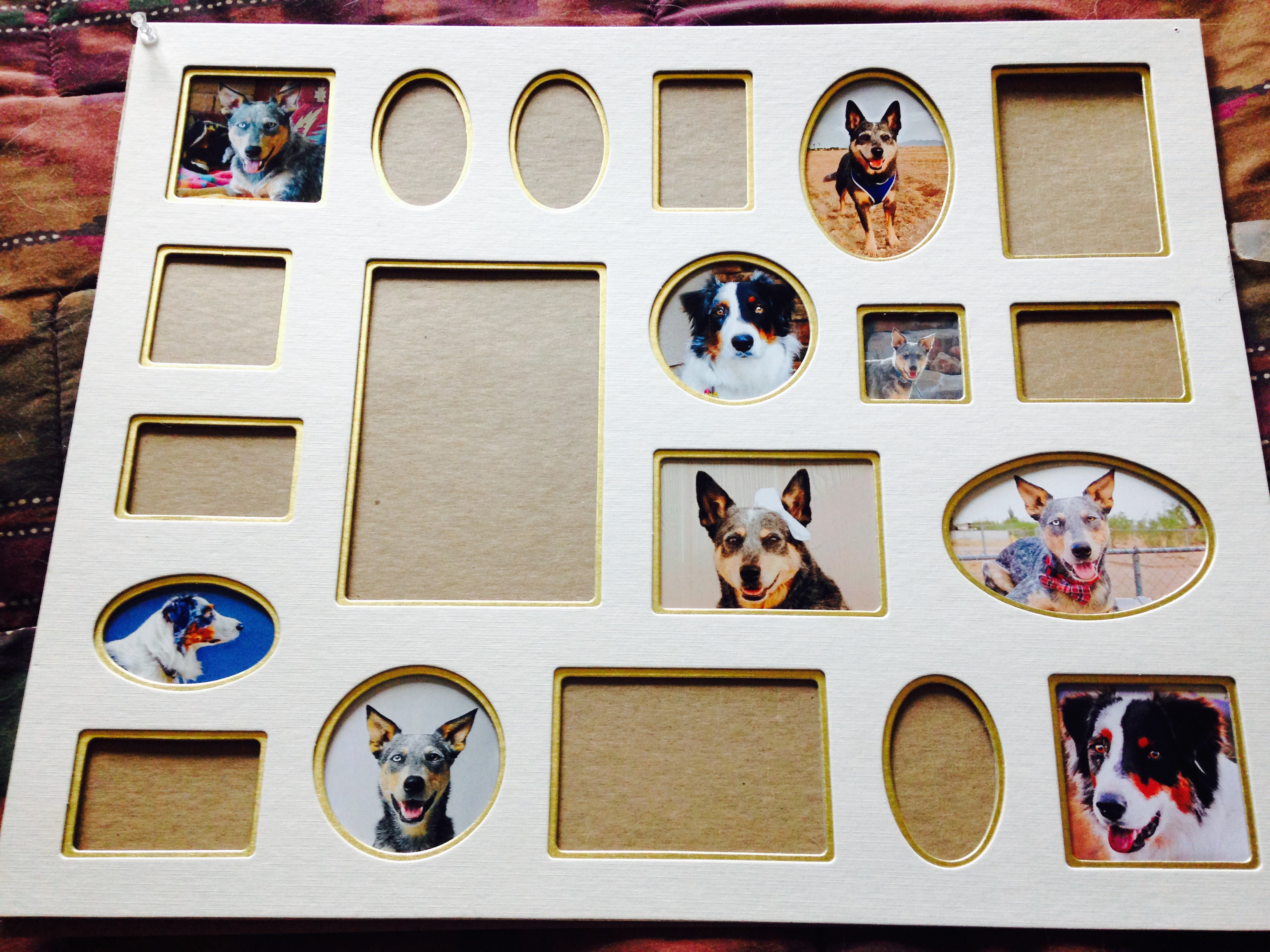 Diy dog photo frame decoration tiffanys diamond dogs 4 repeat steps 2 and 3 until all the frames are filled solutioingenieria Gallery